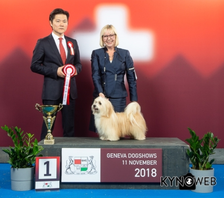 best in show vétéran geneva 11.11.2018